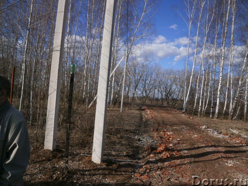 Участок 12 соток в Рубцово - Земельные участки - 30х40 на вьезде в Рубцово,6 км от Рязани.Хороший по..., фото 6
